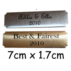 7x1.7cm NAME PLATE Concave nameplate PRINTED not engraved