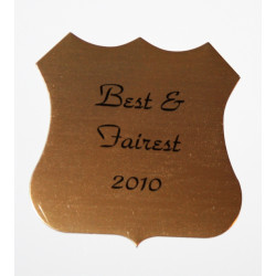 Personalised Self Adhesive SHIELD PLAQUE NAME PLATE
